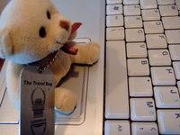 The_bear_003